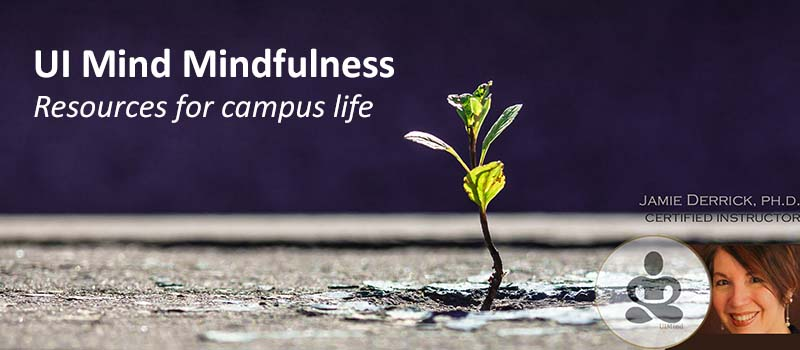 UI Mind Mindfulness: Resources for campus life; Jamie Derrick, PhD, certified instructor (small plant, Jamie's photo)